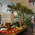イベント会場の野菜装飾