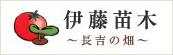 伊藤苗木 長吉の畑
