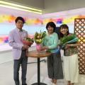 『ひるまえほっと』NHK総合(関東地域のみ)放送