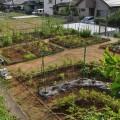タッチタウン上泉~菜園カリキュラム~
