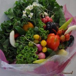 [veggie-bouquet.com][150]DSC0413-281x424