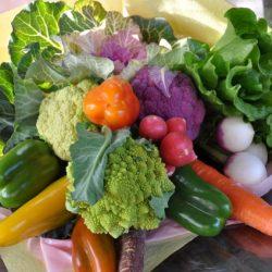 [veggie-bouquet.com][588]DSC1118-637x424