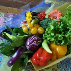 [veggie-bouquet.com][730]DSC0503-637x424