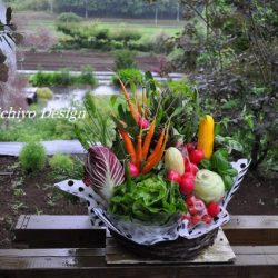 [veggie-bouquet.com][771]DSC0010-637x424