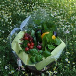 [veggie-bouquet.com][993]DSC0493-637x424